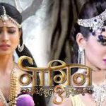 Naagin Season 3 23rd March 2019 Full Episode 83 Watch Online