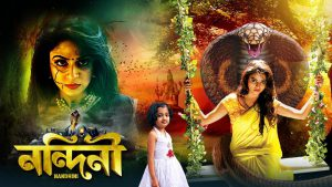 Nandini (Bengali) 18th November 2020 Full Episode 364