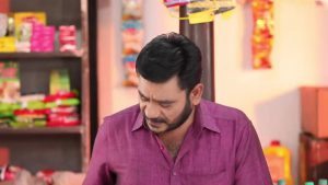 Pandian Stores 29th October 2020 Full Episode 463 Watch Online