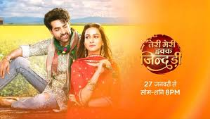 Teri Meri Ikk Jindri Episode 4 Full Episode Watch Online gillitv