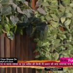 Ishq Mein Marjawan 2 1st February 2021 Full Episode 181