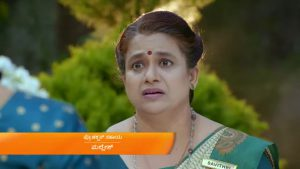 Paaru 26th February 2021 Full Episode 567 Watch Online