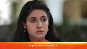 Rajamagal 26th February 2021 Full Episode 285 Watch Online