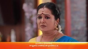 Rajamagal 3rd March 2021 Full Episode 288 Watch Online
