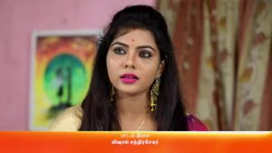 Rettai Roja 17th May 2021 Full Episode 402 Watch Online gillitv
